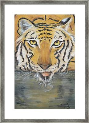 Always Watching  Framed Print by Patricia Olson