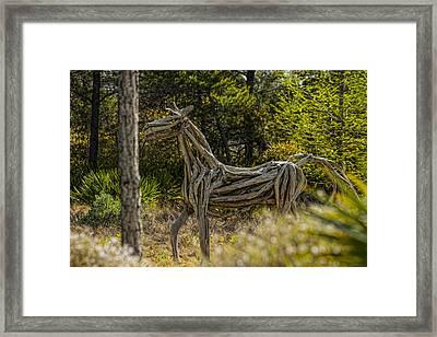 Alys Beach Driftwood Horse Framed Print by Frank Feliciano