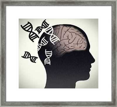 Alzheimers Disease, Genetics Research Framed Print by Science Source
