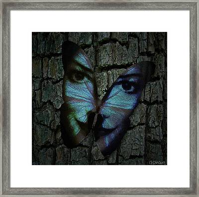 Am I A Butterfly Dreaming I Am A Human ? Framed Print