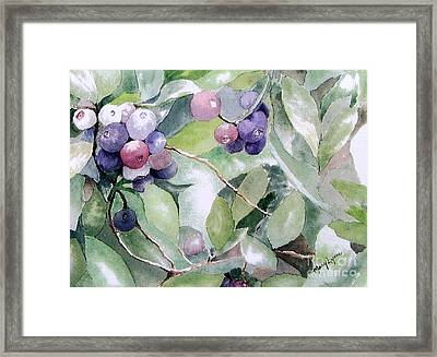 Framed Print featuring the painting Am I Blue? by Mary Lynne Powers