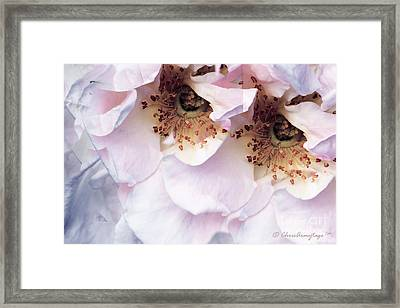 Framed Print featuring the photograph Am I Not Pretty Enough ... by Chris Armytage