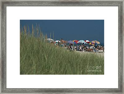 Amagansett Beach Long Island Usa Framed Print by Ros Drinkwater