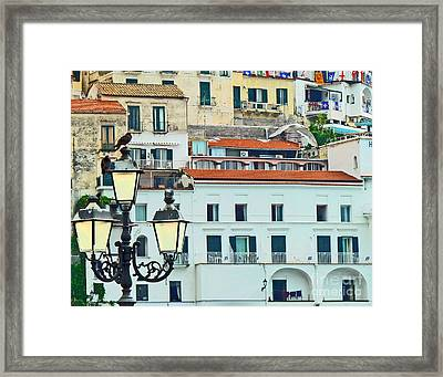 Framed Print featuring the photograph Amalfi Birds And Lamps by Cheryl Del Toro