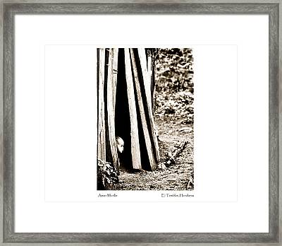Aman Murillo Framed Print by Tina Manley
