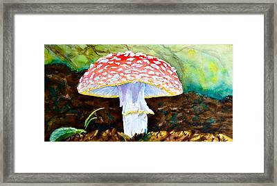 Amanita And Lacewing Framed Print by Beverley Harper Tinsley