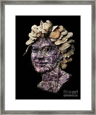 Amaranthine Framed Print by Adam Long