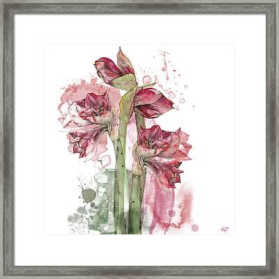 Framed Print featuring the painting Amaryllis Flowers - 3. - Elena Yakubovich by Elena Yakubovich