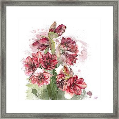 Amaryllis Flowers - 4. - Elena Yakubovich Framed Print