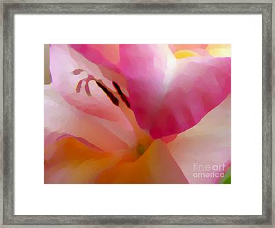 Gladiola Photo Painting Framed Print by Rich Collins