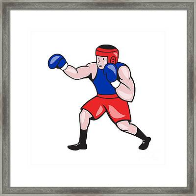 Amateur Boxer Boxing Cartoon Framed Print by Aloysius Patrimonio