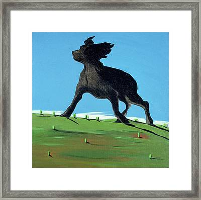 Amazing Black Dog, 2000 Framed Print by Marjorie Weiss