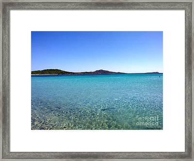 Framed Print featuring the photograph Amazing Blue by Ramona Matei