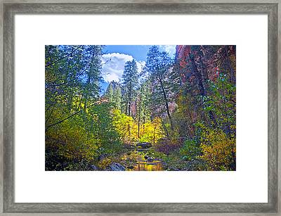 Amazing Color Framed Print by Brian Lambert