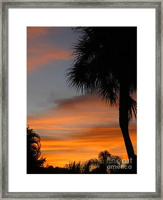 Amazing Sunrise In Florida Framed Print