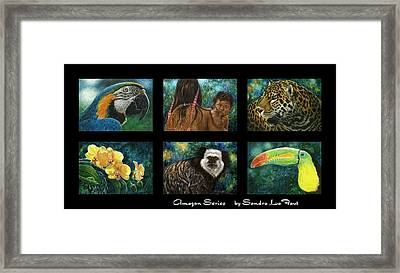Amazon Series Collage Framed Print by Sandra LaFaut
