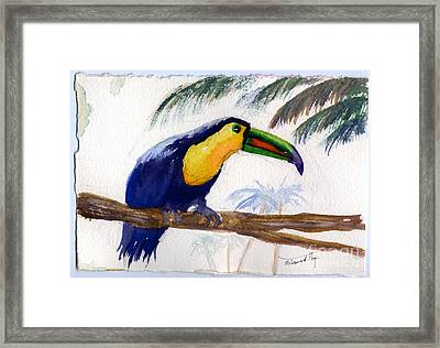 Amazonian Framed Print by Mohamed Hirji