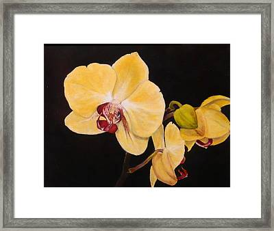 Framed Print featuring the painting Amber Orchids by Sandra Nardone