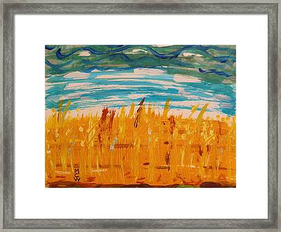 Amber Waves Framed Print by Mary Carol Williams