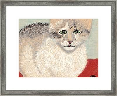 Ambers Shadow Framed Print by Jessica Foster