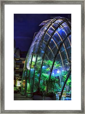 Ambient Greenhouse Framed Print by EXparte SE