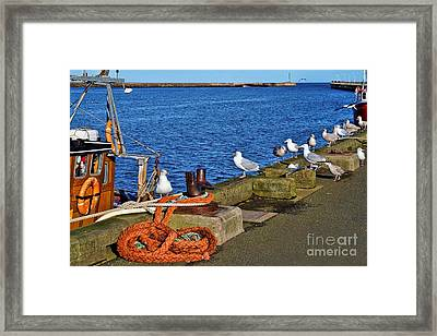 Amble Quayside Framed Print