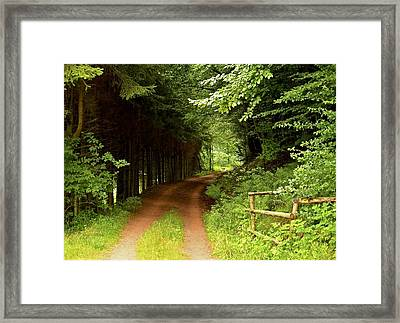 Ambler's Way Framed Print