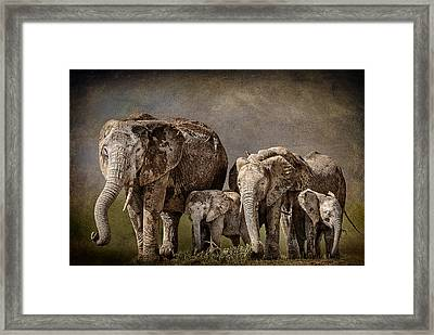 Amboseli Herd Framed Print by Mike Gaudaur