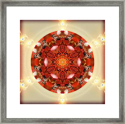 Ambrosia Framed Print by Alicia Kent