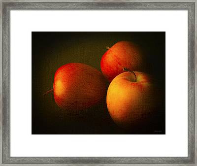 Ambrosia Apples Framed Print by Theresa Tahara