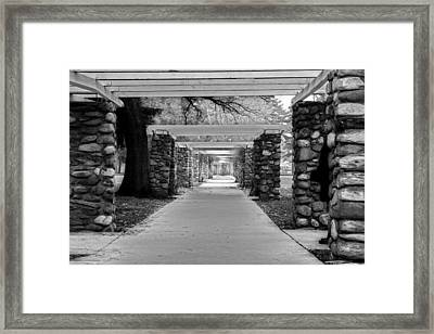 Ambuscade Along The Trellis Path Framed Print
