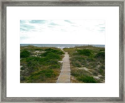 Amelia Island Beach Framed Print
