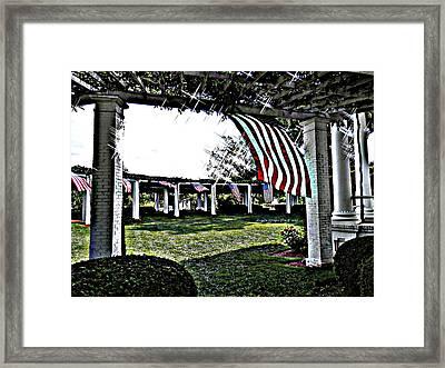 Amercian Freedom Framed Print