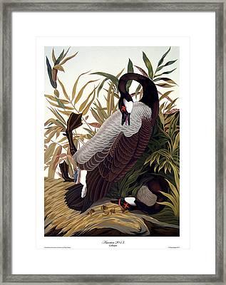 America 2013 Framed Print by Philip Slagter
