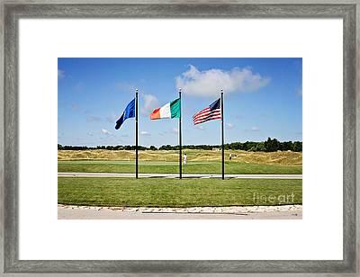 American And Irish Flag Framed Print