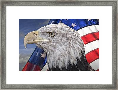 American Bald Eagle With The Stars And Stripes Framed Print by Randall Nyhof