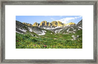 American Basin Wildflowers Framed Print