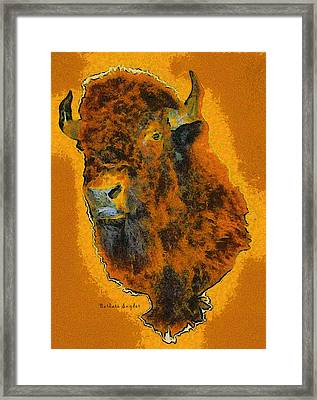 American Buffalo Framed Print by Barbara Snyder