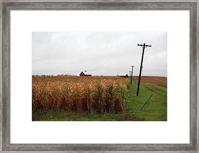 American Cornfield And Farmhouse Framed Print