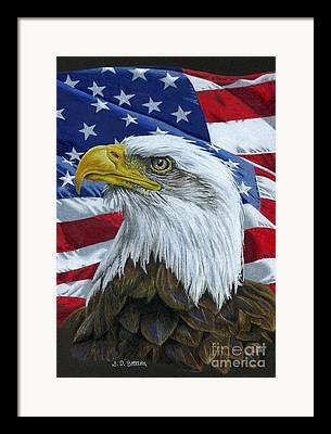 Bald Eagle Drawings Framed Prints