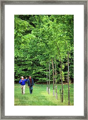 American Elm Nursery Framed Print by Scott Bauer/us Department Of Agriculture