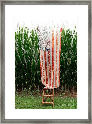 American Flag And A Field Of Corn Framed Print