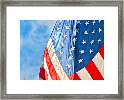 American Flag And All It's Glory Framed Print