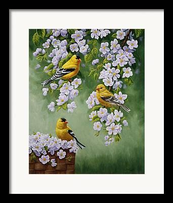 Flower Basket Framed Prints