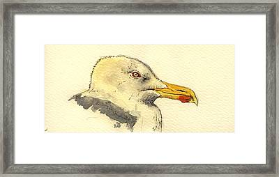 American Herring Gull Framed Print by Juan  Bosco