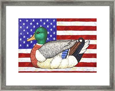 American Mallard Framed Print by Linda Mears