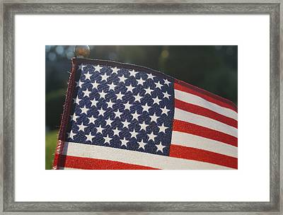 American Pride Framed Print by Andrea Rea