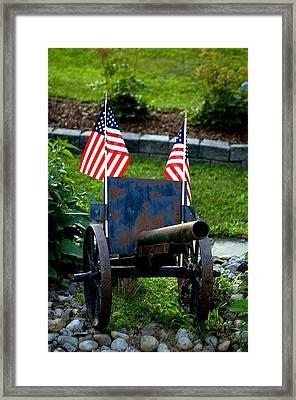 American Pride Framed Print by Timothy  Shea