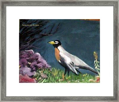 American Robin Framed Print by M Bhatt