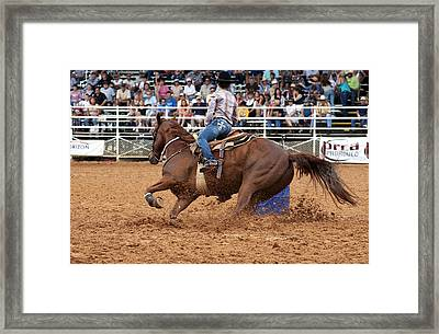 American Rodeo Female Barrel Racer White Blaze Chestnut Horse IIi Framed Print by Sally Rockefeller
